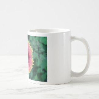 Fleur de plage mugs à café