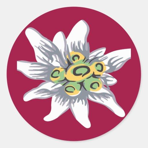Fleur d'edelweiss adhésif rond