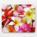 Fleur d'Hawaï de Frangipani de Plumeria customisée Tapis De Souris