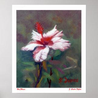 Fleur/Flower