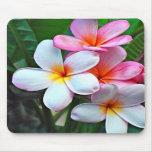 Fleur hawaïenne Mousepad Tapis De Souris