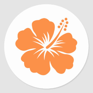 Fleur orange de ketmie adhésifs ronds