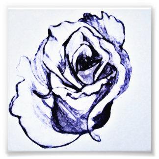 Fleur Photographie