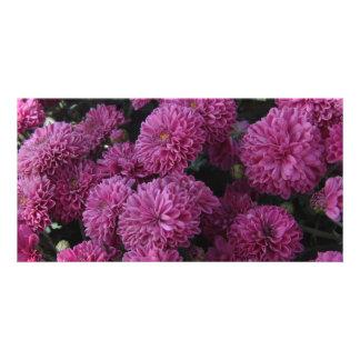 Fleur pourpre photocartes personnalisées