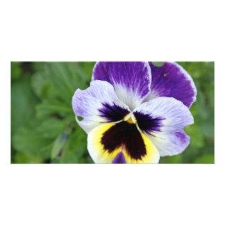 fleur renversante de pensée photocarte customisée