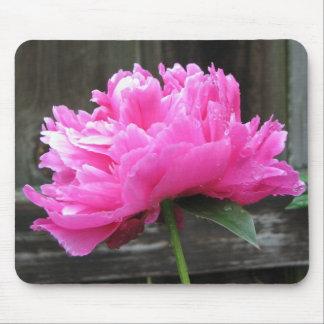 Fleur rose de pivoine tapis de souris