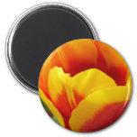 Fleur une magnets pour réfrigérateur