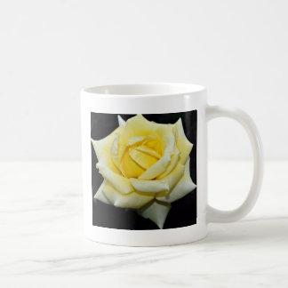 """Fleurs blanches hybrides de """"Helmut Schmidt"""" de Mug Blanc"""