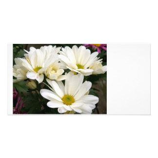 fleurs photocarte