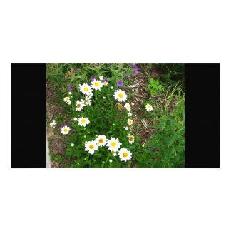 fleurs photocartes personnalisées