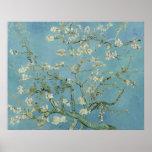 Fleurs d'amande par Vincent van Gogh Affiches