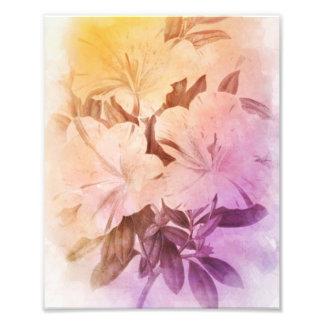 Fleurs de cru de couleur d'eau photographes
