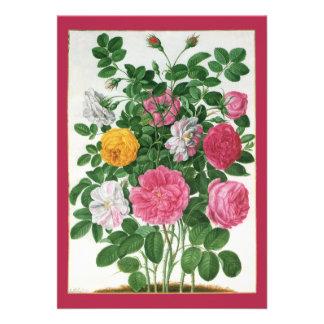 Fleurs de floraison de cru, roses de jardin de res cartons d'invitation personnalisés