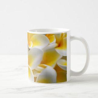 Fleurs de Plumeria de Frangipani Mug Blanc