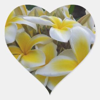 Fleurs de Plumeria d'Hawaï Autocollant En Cœur