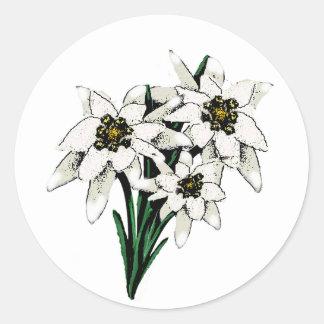 Fleurs d'edelweiss sticker rond