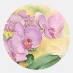 Fleurs d'orchidée de Phalaenopsis - multi Adhésifs Ronds
