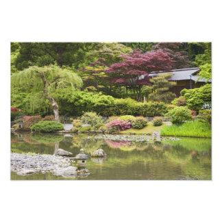 Fleurs en fleur au jardin japonais, photographes