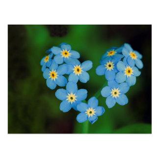 Fleurs en forme de coeur de myosotis carte postale