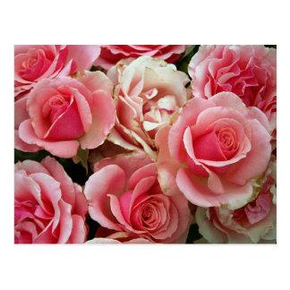 Fleurs florales de bouquet rose et crème de roses cartes postales