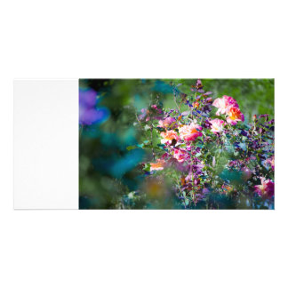 Fleurs froides photocarte personnalisée