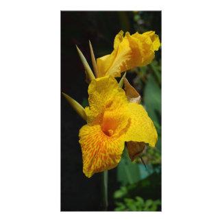 fleurs jaunes de fleurs cartes de vœux avec photo