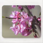 Fleurs orientales de Redbud Tapis De Souris