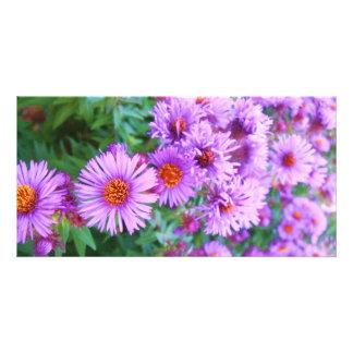 Fleurs pourpres modèle pour photocarte