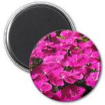 Fleurs roses d'oeillet aimant pour réfrigérateur