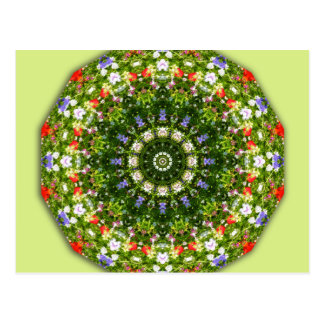 Fleurs sauvages, Fleur-Mandala Cartes Postales