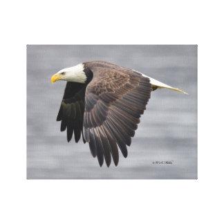 Fliegen Eagle Leinwanddruck