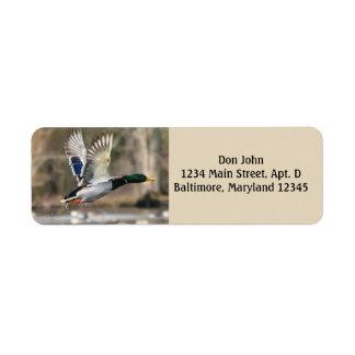 Fliegen-Enten-Rücksendeadressen-Aufkleber