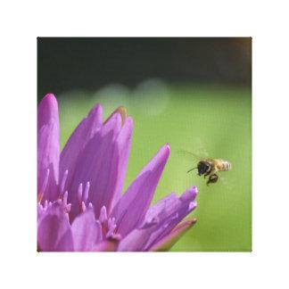 Fliegen-Honig-Biene Leinwanddruck