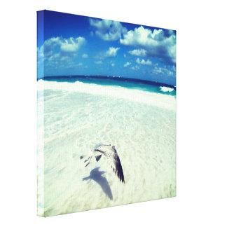 Fliegen-Seemöwe am Strand Leinwanddruck