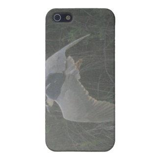 Fliegender Schwarz-Gekrönter Nacht-Reiher 2 Spe iPhone 5 Etuis