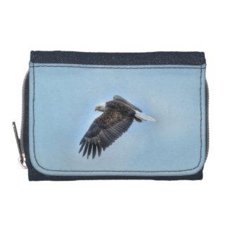 Fliegendes kahler Adler-und Wolken-Tier-Foto