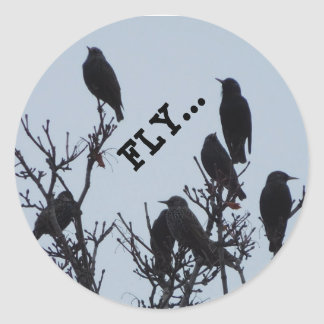 Fliegenminiaufkleber Runder Aufkleber