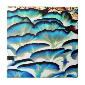 flippige glänzende Pilze Kleine Quadratische Fliese