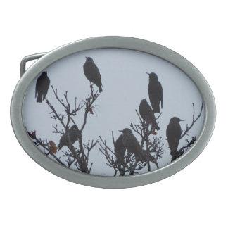 Flippige Maine-Vogel-Schnalle Ovale Gürtelschnallen