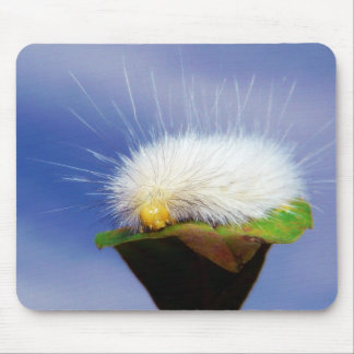Flockige weiße Raupe Mauspad