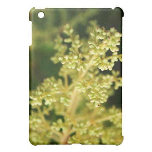 floral coque iPad mini