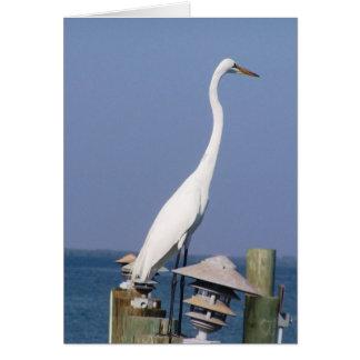 Florida-Kran Karte