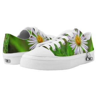 Florida-Schönheits-(5064) niedrige Spitzenschuhe Niedrig-geschnittene Sneaker