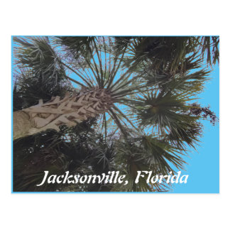 Florida-Strand Postkarte - Palme