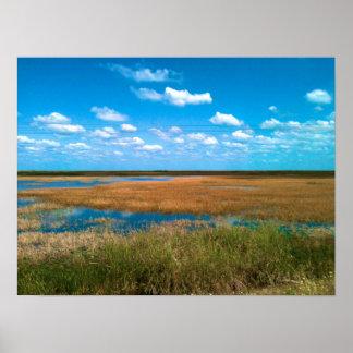 Florida-Sumpfgebiete Poster