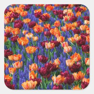 [FLOW-003] Gisement de fleur Sticker Carré
