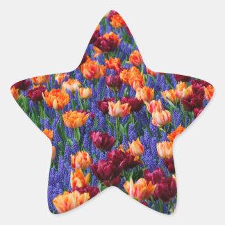 [FLOW-003] Gisement de fleur Autocollants En Étoile