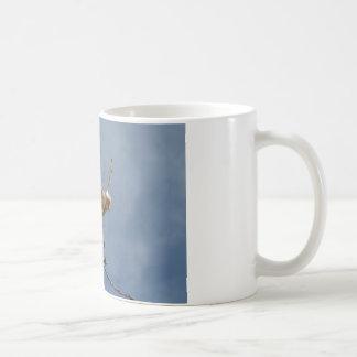 flower from de desert mug blanc