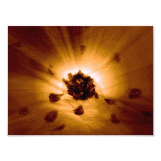 Flower power  tirage photo