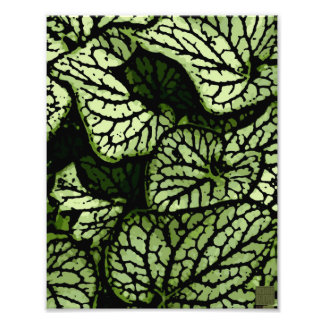 Flower power en vert et Brown Photographies D'art